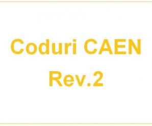 Infiintari Societati comerciale - Coduri CAEN Rev. 2. Infiintari Firme - Coduri CAEN