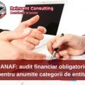 Audit finbanciar-Reinvent Consulting