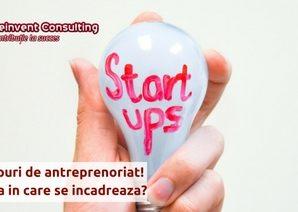 Tipurile de antreprenoiat Reinvent Consulting (1)
