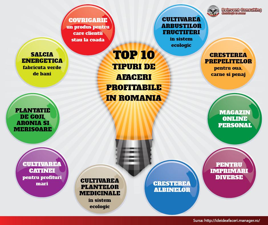 10 idei de afaceri profitabile in Romania, Reinvent Consulting