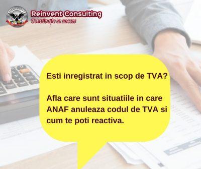 Cum se pierde codul de TVA si cum te poti reinregistra in scop de TVA Reinvent Consulting