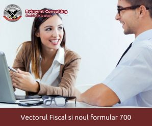 vector fiscal formular 700 Reinvent Consulting