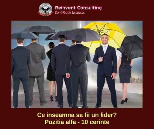 Ce inseamna sa fii lider_ Pozitia alfa - 10 cerinte Reinvent Consulting