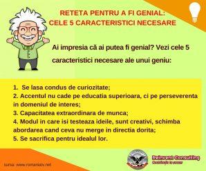 RETETA PENTRU A FI GENIAL_ CELE 5 CARACTERISTICI NECESARE Reinvent Consulting