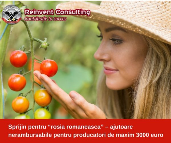 """Sprijin pentru """"rosia romaneasca"""" – ajutoare nerambursabile pentru producatori de maxim 3000 euro Reinvent Consulting"""