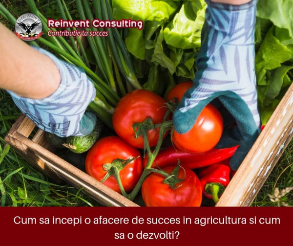 Afacere in agricultura, Reinvent Consulting